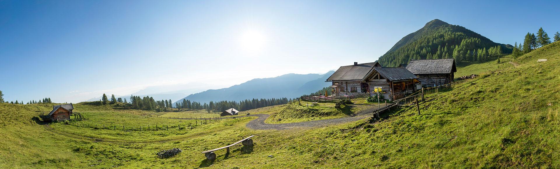 Sommerurlaub & Wanderurlaub in Flachau, Salzburg